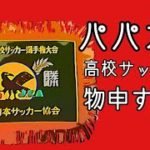 パパカツ高校サッカーに物申すの巻/埼玉県大会決勝を見てパパカツの思う事