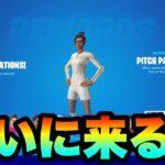 【フォートナイト】新サッカースキンが24日の9時に販売確定!!価格はいくらになる?part419【サッカースキン】