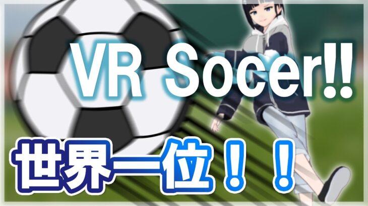 世界一とれた!VRでマジでボール蹴れるサッカーゲームが楽しすぎ!【Rezzil player 21】【Vtuber】