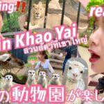 【subtitle】サッカー選手と嫁とタイ〈vlog#135〉カオヤイ旅行✨動物園編🦁20動物園ってこんな楽しかった😍っとタイで気付かせれました‼️ワイルドなタイの動物園一緒に巡りましょう💓