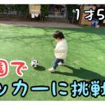 【1才5ヶ月】サッカー初挑戦!毎日公園で遊んでます!First challenge for soccer! I play in the park every day!