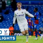 Leeds United 2-0 Crystal Palace | Bamford scores 100th career goal! Premier League highlights