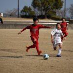 第47回徳島県サッカー少年団大会 準決勝2試合