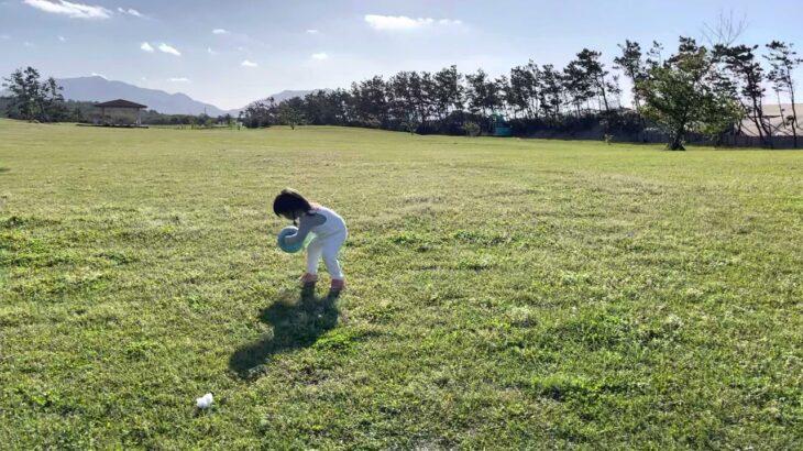 ドリブルドリブル⚽️サッカー 2歳10ヶ月 축구 드리블 ⚽️축구 2살 10개월 Soccer dribble ⚽Soccer 2y&10ms #村方乃々佳 #노노카 #nonokamurakata
