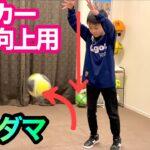 【テクダマ】サッカー技術向上用のボール【練習用ボール】