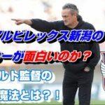 アルビレックス新潟のサッカーが魅力的なワケ【albirex】