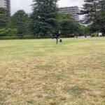 【野球】ピッチングを極めたい元サッカー部アラサー男子の日常
