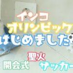 【インコオリンピック開催!!】開会式、聖火、サッカー代表戦でボタンインコ大活躍!!
