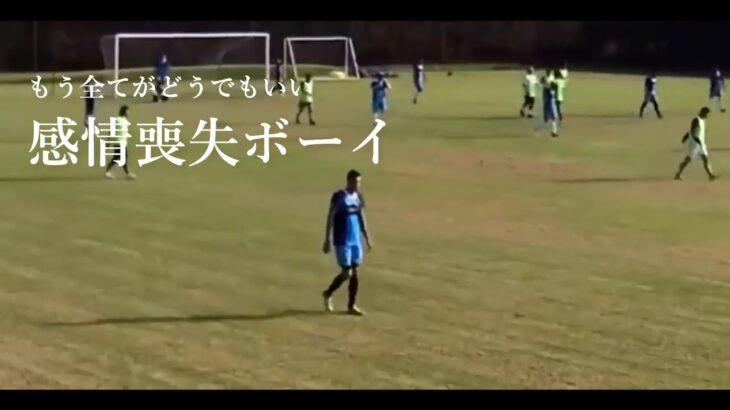 最後に犬がゴールを決めるサッカー動画
